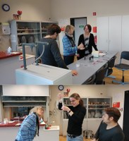 Fortbildung am MBK: Fachbereich Biologie experimentiert mit DNA ...