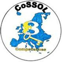 COSSOL  Concepts for a successful self organized Learning